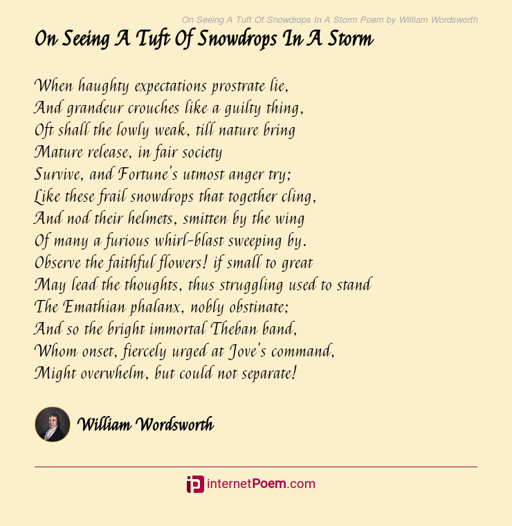 On Seeing A Tuft Of Snowdrops In A Storm Poem By William