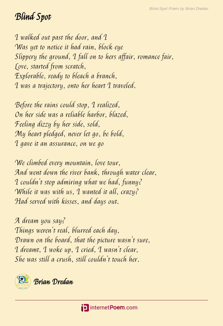 Blind Spot Poem By Brian Dredan