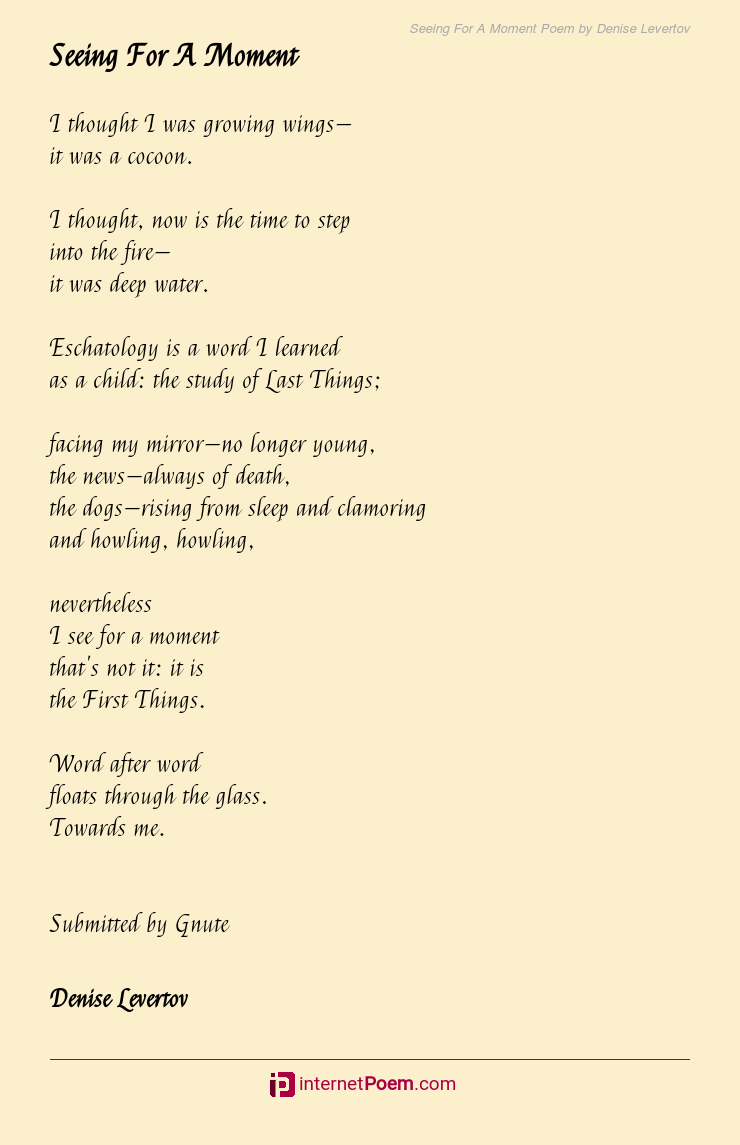 Seeing For A Moment Poem By Denise Levertov