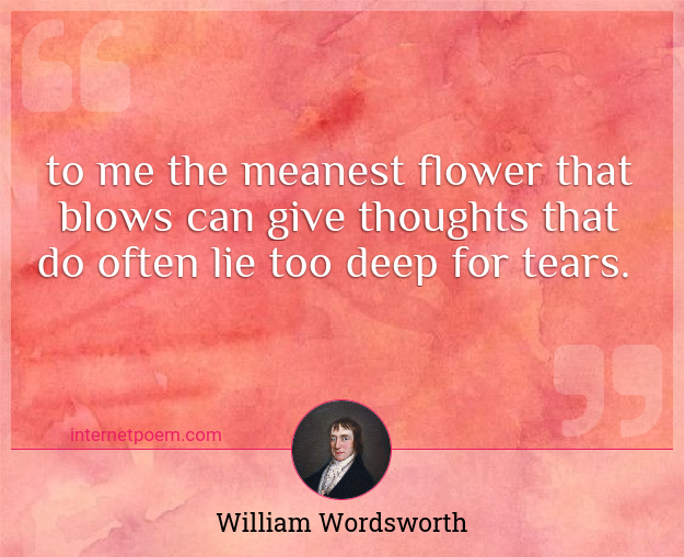 To me the meanest flower that blows can give Thoughts that ...